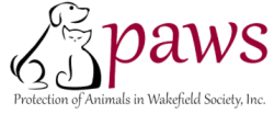 PAWS 5K Virtual Fun Run, Walk and Wag, and COSTUME CONTEST!