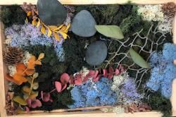 DIY Moss Wall