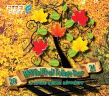WNY Rail Trail Foliage Tour - Virtual Autumn Adventure