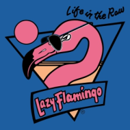 Lazy Flamingo Half Marathon & 2-Person Relay