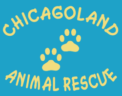 Chicagoland Animal Rescue NFP