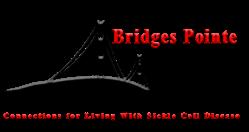 Bridges Pointe