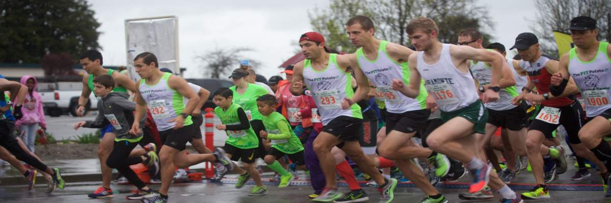 SHAMROCK 5K FUN RUN & WALK Presented by Dick's Sporting Goods Banner Image