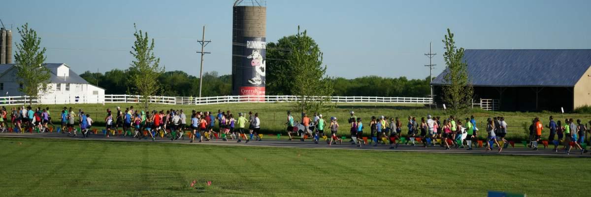 Running With The Cows Half Marathon & 5K Banner Image