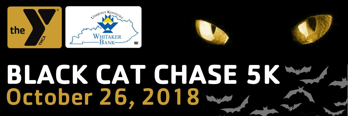 The Black Cat Chase Banner Image