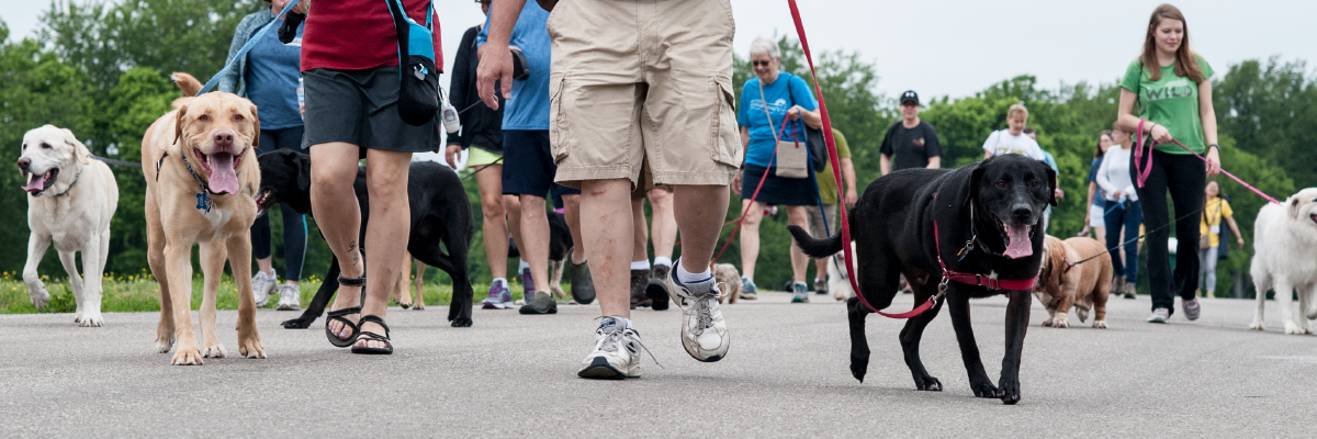 Woodford Wag Dog Walk Banner Image