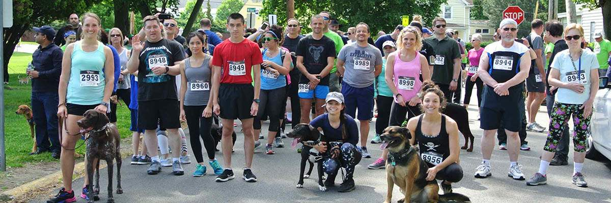 ARF 5K RUN & WALK With The DOGS Banner Image