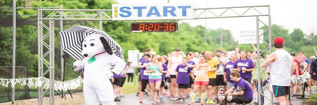 SICSA Lift Your Leg 5k/10k/1-mile Banner Image