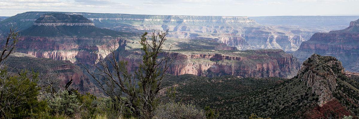 Grand Canyon Half Marathon Banner Image