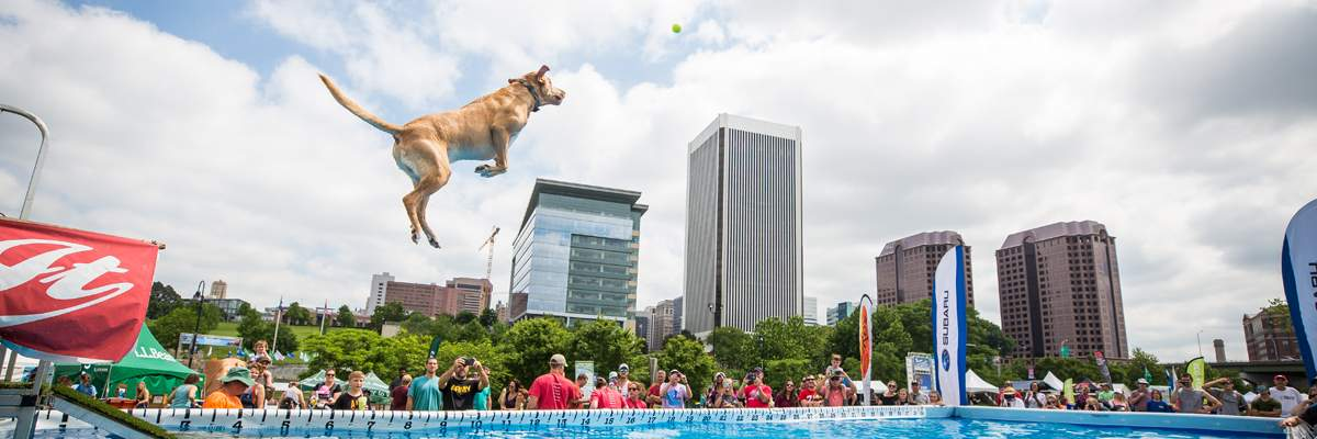 2018 Subaru Ultimate Air Dogs at Dominion Energy Riverrock Banner Image