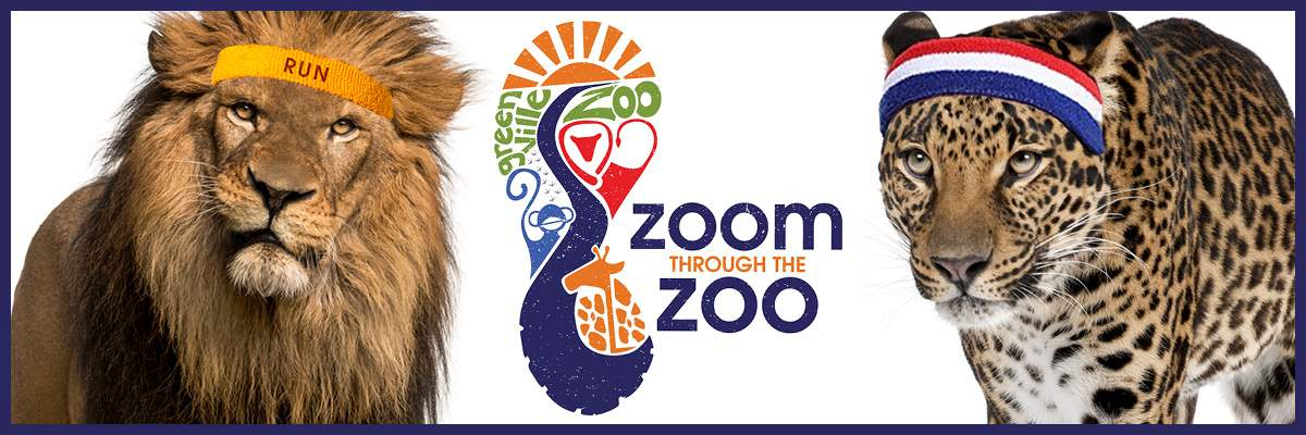 Zoom Through the Zoo Banner Image