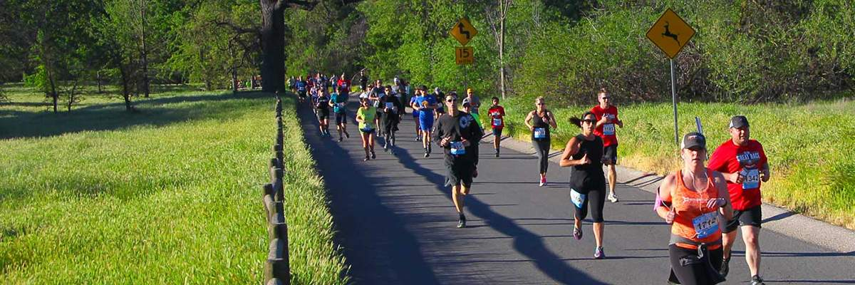 Dole Great Race of Agoura Hills Banner Image