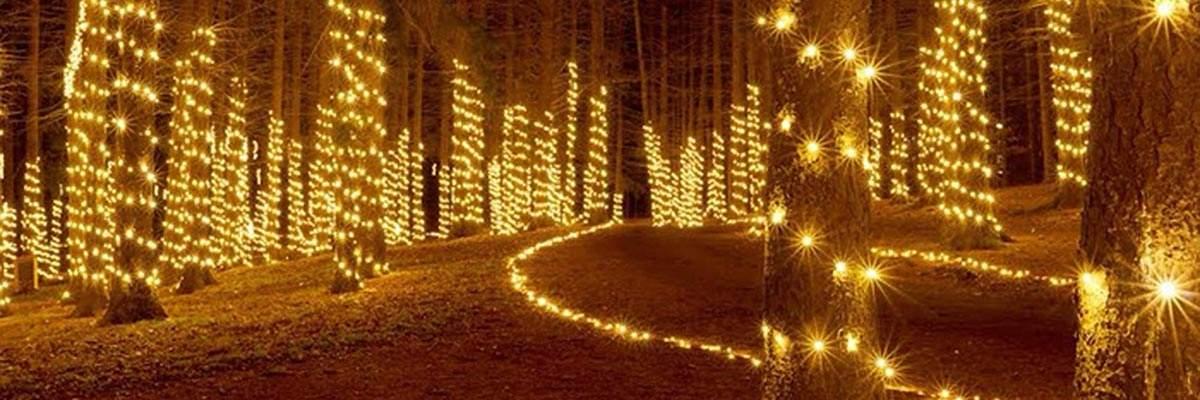 Clays Park Christmas Lights 2020 Run, Run, Rudolph 5K