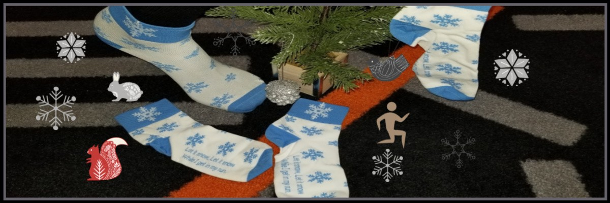 Frosty Forest Trail Run Banner Image